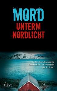 mord_unterm_nordlicht-9783423214308